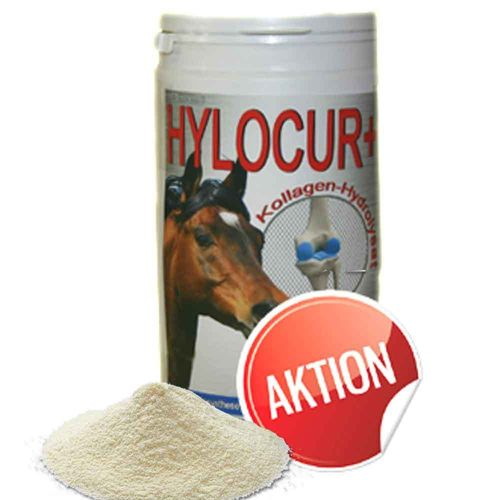 HYLOCUR+ for horses to maintain health of stressed joints 650g special size